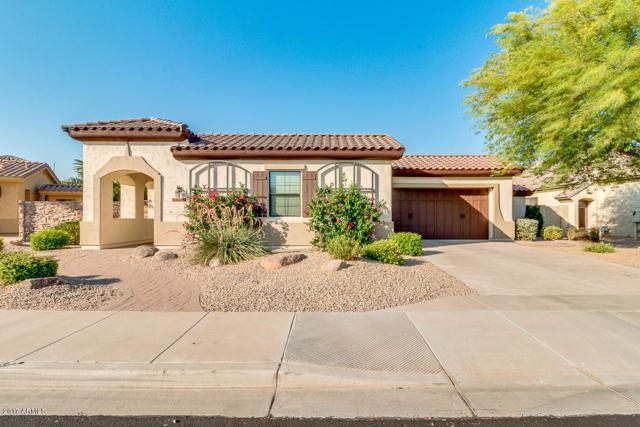 14386 W Cypress Street, Goodyear, AZ 85395 (MLS #5624154) :: Occasio Realty
