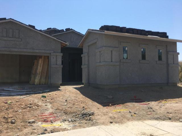 29348 N 70TH Lane, Peoria, AZ 85383 (MLS #5624164) :: The Laughton Team