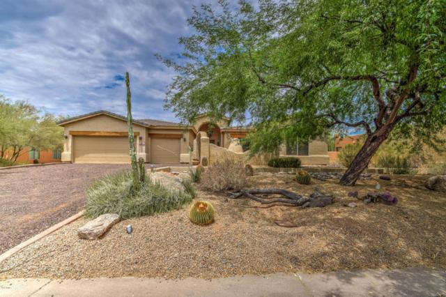 5450 E Desert Forest Trail, Cave Creek, AZ 85331 (MLS #5624204) :: Occasio Realty