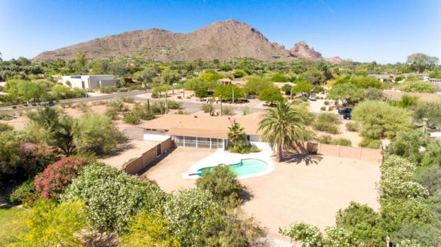 6009 N Kachina Lane, Paradise Valley, AZ 85253 (MLS #5624210) :: Sibbach Team - Realty One Group