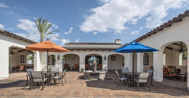 14200 W Village Parkway #2265, Litchfield Park, AZ 85340 (MLS #5624213) :: Group 46:10