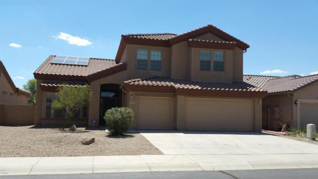 17204 N Oliveto Avenue, Maricopa, AZ 85138 (MLS #5624223) :: Group 46:10