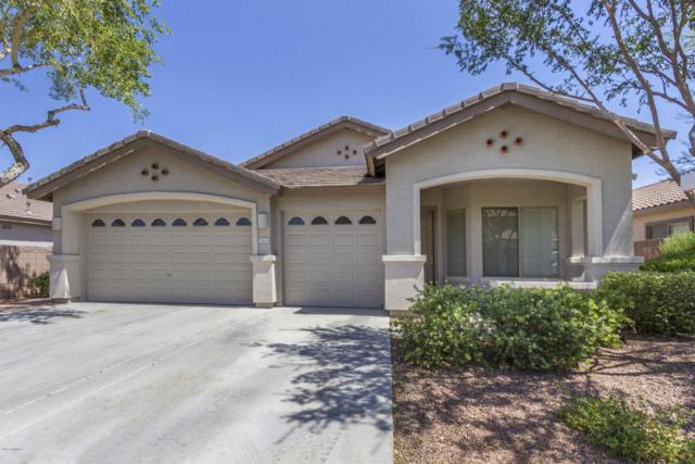 1422 E Ebony Drive, Chandler, AZ 85286 (MLS #5624268) :: The Laughton Team
