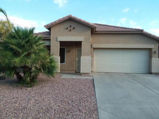 14349 W Mitchell Drive, Goodyear, AZ 85395 (MLS #5624294) :: Occasio Realty