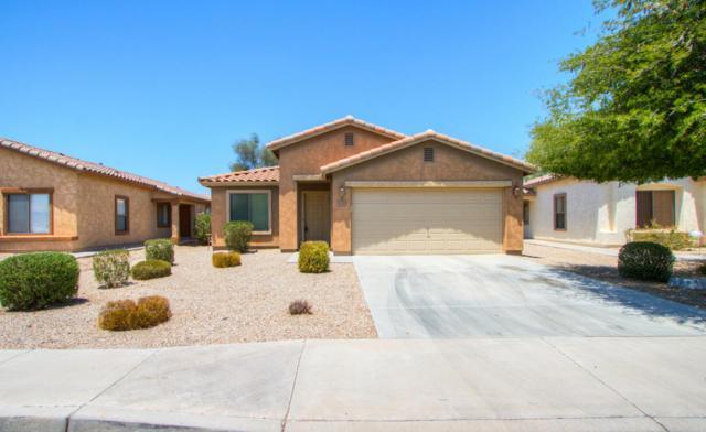 44724 W Gavilan Drive, Maricopa, AZ 85139 (MLS #5624334) :: Group 46:10