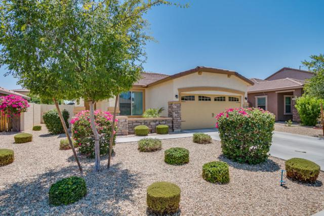 15623 W Devonshire Avenue, Goodyear, AZ 85395 (MLS #5624373) :: Occasio Realty