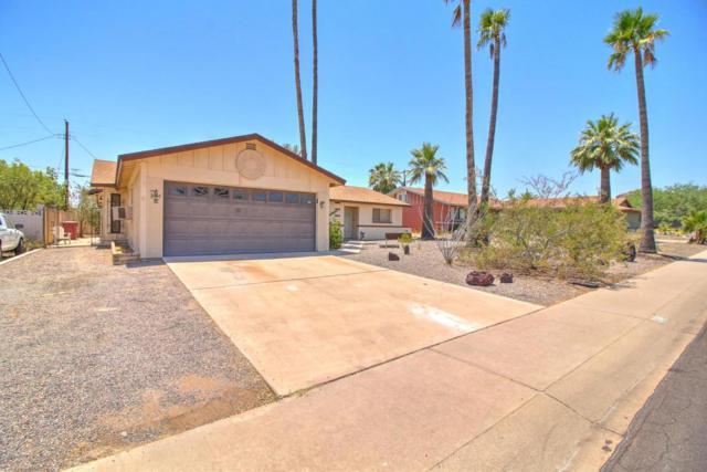 6443 E Holly Street, Scottsdale, AZ 85257 (MLS #5624394) :: Sibbach Team - Realty One Group