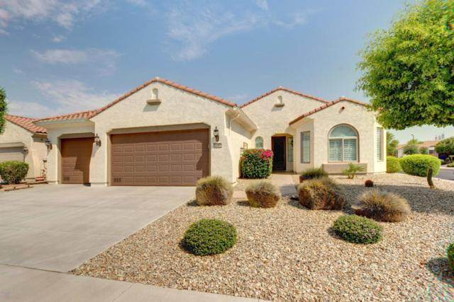 26352 W Runion Lane, Buckeye, AZ 85396 (MLS #5624395) :: Desert Home Premier
