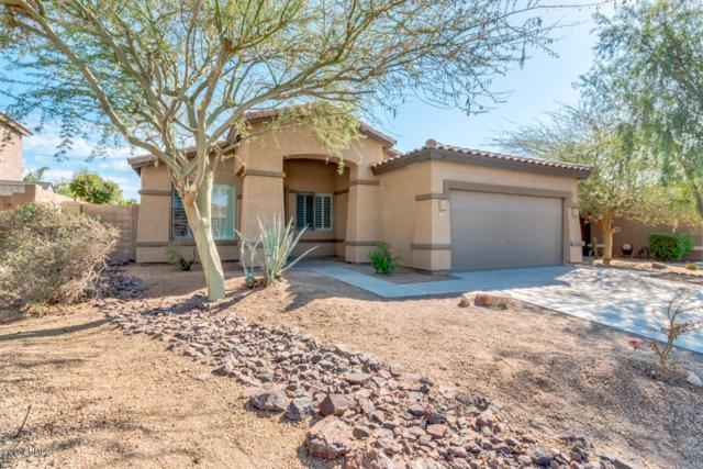 17593 W Wind Song Avenue, Goodyear, AZ 85338 (MLS #5624402) :: Kortright Group - West USA Realty