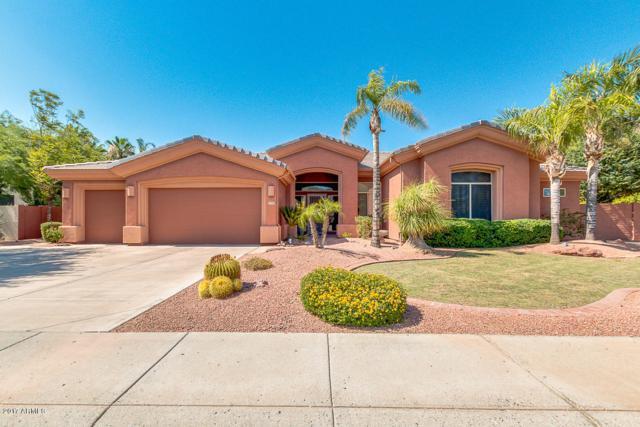 5520 W Creedance Boulevard W, Glendale, AZ 85310 (MLS #5624407) :: Occasio Realty