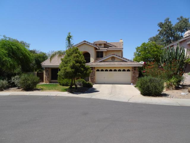 11022 W Laurelwood Lane, Avondale, AZ 85392 (MLS #5624436) :: Group 46:10
