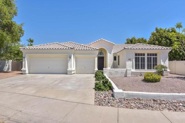 7180 W Paraiso Drive, Glendale, AZ 85310 (MLS #5624439) :: Occasio Realty