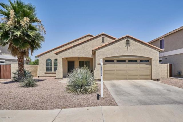 1316 E Macaw Drive, Gilbert, AZ 85297 (MLS #5624451) :: Occasio Realty