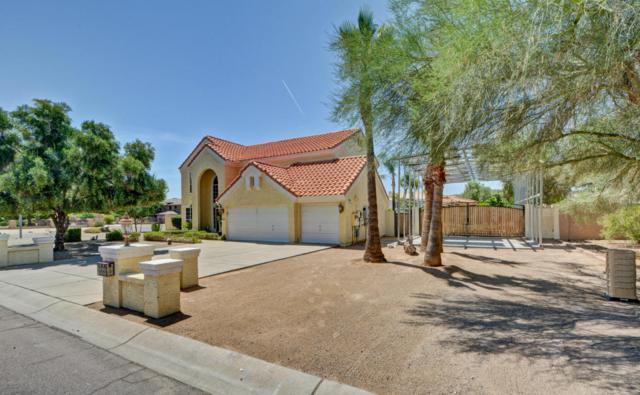 5501 W Saguaro Park Lane, Glendale, AZ 85310 (MLS #5624479) :: Sibbach Team - Realty One Group