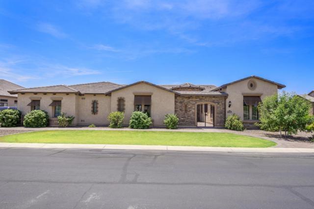 2457 E Amber Court, Gilbert, AZ 85296 (MLS #5624484) :: Occasio Realty
