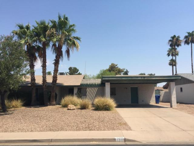750 W Pampa Avenue, Mesa, AZ 85210 (MLS #5624488) :: Occasio Realty