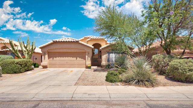 3810 E Encinas Avenue, Gilbert, AZ 85234 (MLS #5624490) :: Occasio Realty