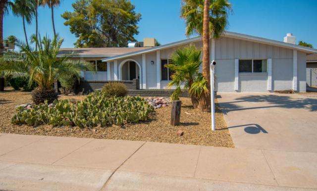 1861 E Loma Vista Drive, Tempe, AZ 85282 (MLS #5624503) :: Sibbach Team - Realty One Group