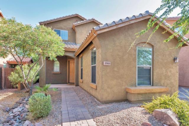 3944 E Fairview Street, Gilbert, AZ 85295 (MLS #5624508) :: Occasio Realty