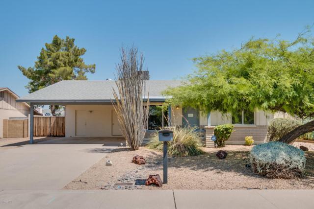 2172 E Apollo Avenue, Tempe, AZ 85283 (MLS #5624517) :: Sibbach Team - Realty One Group