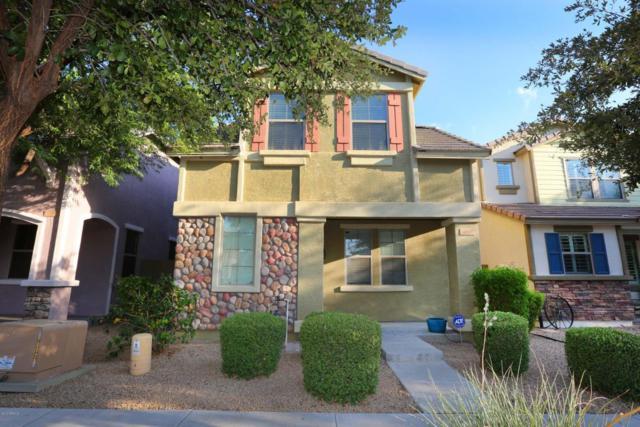4383 E Morrow Drive, Phoenix, AZ 85050 (MLS #5624518) :: Occasio Realty