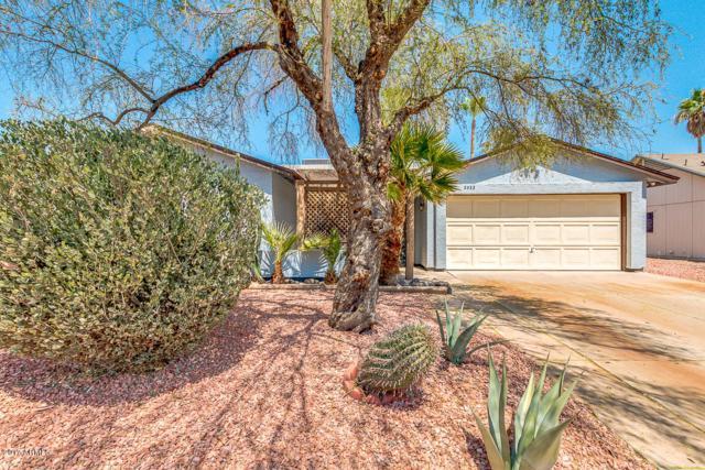2523 N Evergreen Street, Chandler, AZ 85225 (MLS #5624524) :: Occasio Realty