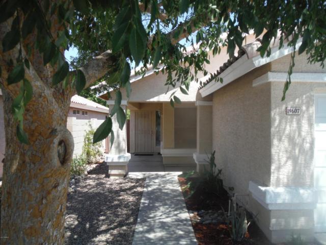 19607 N 49TH Avenue, Glendale, AZ 85308 (MLS #5624526) :: Sibbach Team - Realty One Group