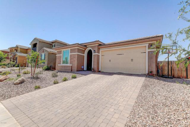 2373 E Stacey Road, Gilbert, AZ 85298 (MLS #5624532) :: Occasio Realty