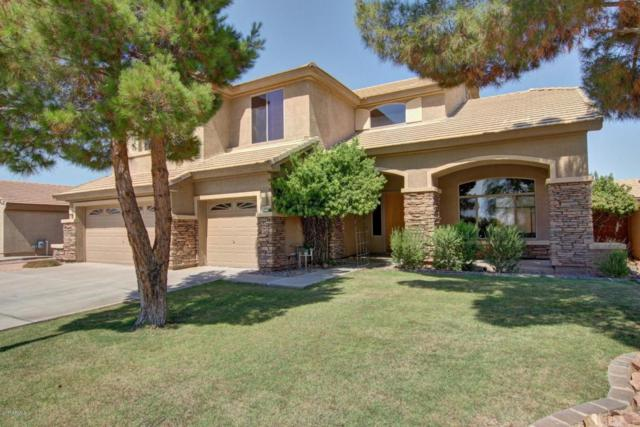 1881 S Carriage Lane, Chandler, AZ 85286 (MLS #5624565) :: Occasio Realty
