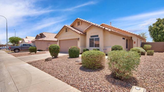 113 W Caroline Lane, Chandler, AZ 85225 (MLS #5624579) :: Occasio Realty