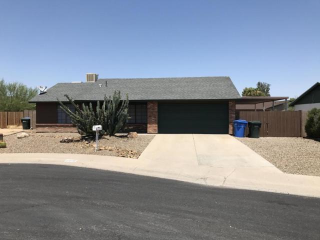 17605 N 32ND Way, Phoenix, AZ 85032 (MLS #5624585) :: Occasio Realty