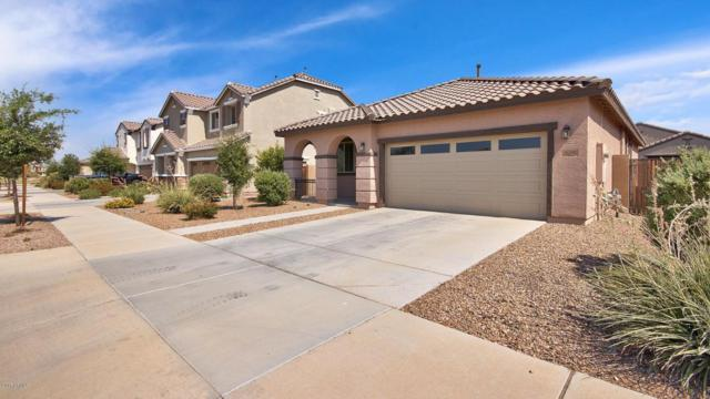 21131 E Cherrywood Drive, Queen Creek, AZ 85142 (MLS #5624593) :: RE/MAX Home Expert Realty