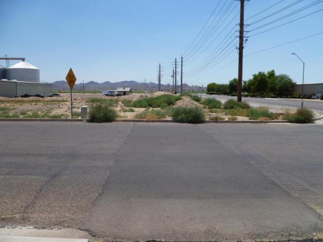 4239 S Sarival Avenue, Goodyear, AZ 85338 (MLS #5624596) :: 10X Homes