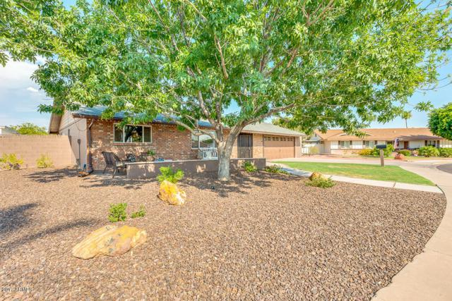 1339 N 25TH Street, Mesa, AZ 85213 (MLS #5624598) :: Occasio Realty