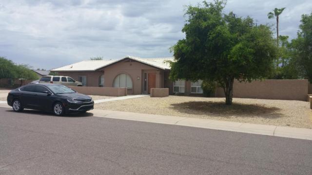 5857 E Betty Elyse Lane, Scottsdale, AZ 85254 (MLS #5624601) :: Sibbach Team - Realty One Group