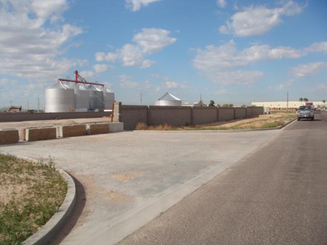16149 W Eddie Albert Way, Goodyear, AZ 85338 (MLS #5624615) :: 10X Homes