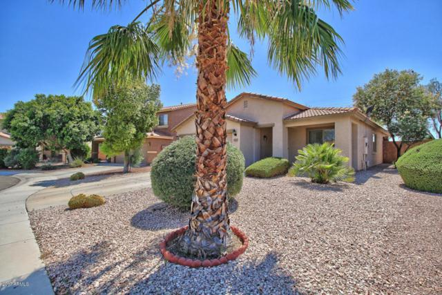 15112 N 162ND Lane, Surprise, AZ 85379 (MLS #5624671) :: Kortright Group - West USA Realty