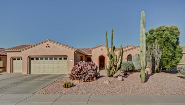 14891 W Gentle Breeze Way, Surprise, AZ 85374 (MLS #5624682) :: Kortright Group - West USA Realty