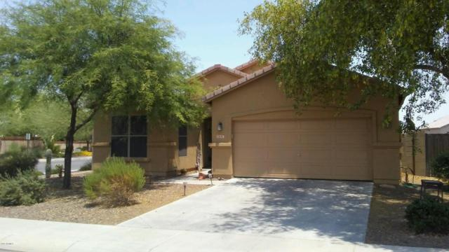 1815 S 117TH Drive, Avondale, AZ 85323 (MLS #5624701) :: Kortright Group - West USA Realty