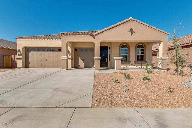 192 E Crescent Place, Chandler, AZ 85249 (MLS #5624711) :: Sibbach Team - Realty One Group