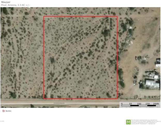 00 W Pampas Grass Road, Maricopa, AZ 85139 (MLS #5624714) :: Group 46:10