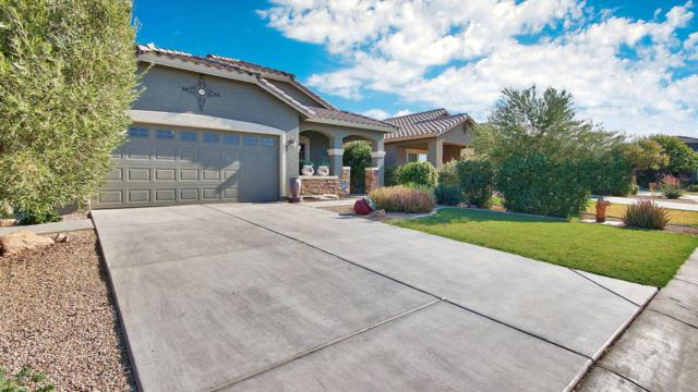 1791 W Stephanie Lane, Queen Creek, AZ 85142 (MLS #5624716) :: RE/MAX Home Expert Realty