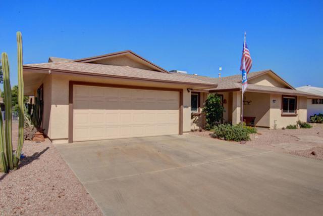 10842 W Sarabande Circle, Sun City, AZ 85351 (MLS #5624723) :: Desert Home Premier
