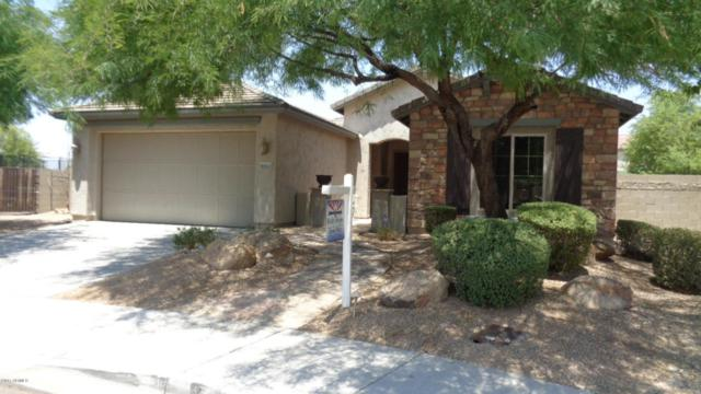 9062 W Quail Track Drive, Peoria, AZ 85383 (MLS #5624732) :: Sibbach Team - Realty One Group