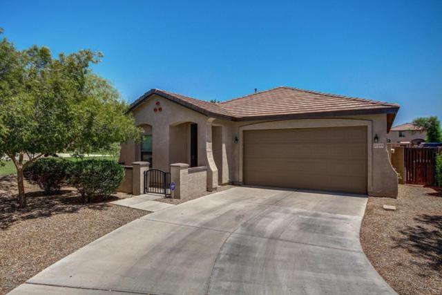 21989 E Via Del Palo Street, Queen Creek, AZ 85142 (MLS #5624733) :: RE/MAX Home Expert Realty
