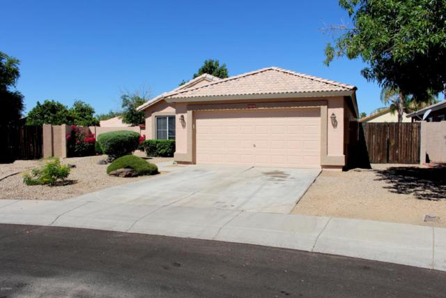 10276 N 94TH Drive, Peoria, AZ 85345 (MLS #5624745) :: Sibbach Team - Realty One Group