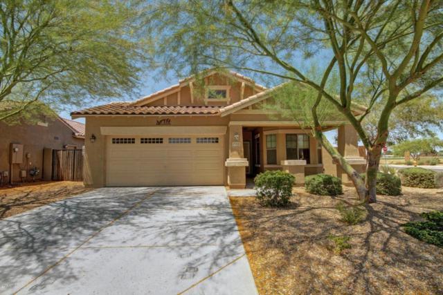 17010 W Zuni Street, Goodyear, AZ 85338 (MLS #5624763) :: 10X Homes