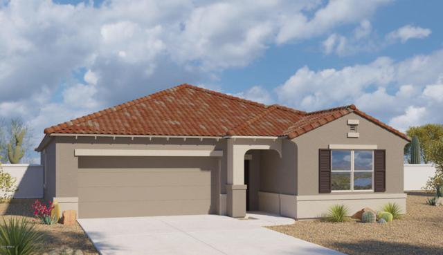 5912 S 28TH Lane, Phoenix, AZ 85041 (MLS #5624769) :: Group 46:10