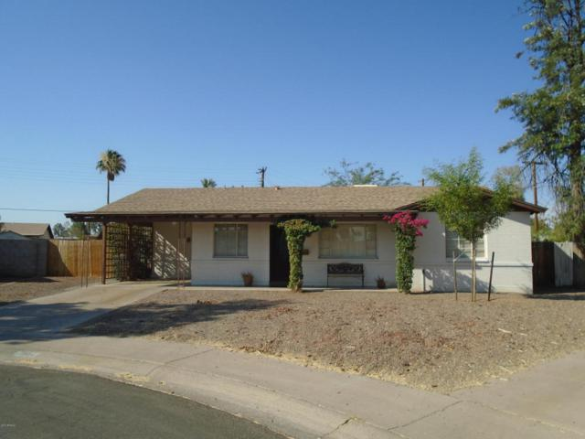 7321 N 19TH Drive, Phoenix, AZ 85021 (MLS #5624779) :: Sibbach Team - Realty One Group