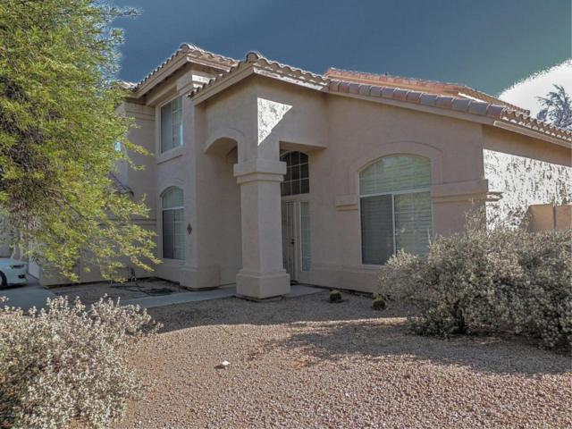4512 E Rocky Slope Drive, Phoenix, AZ 85044 (MLS #5624792) :: Sibbach Team - Realty One Group
